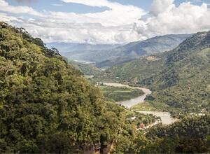 Káva Peru z oblasti Chanchamayo
